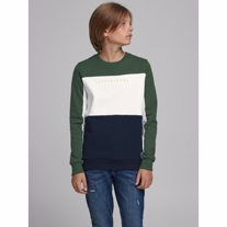 JACK & JONES Sweatshirt Pro Trekking Green