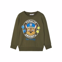 NAME IT Paw Patrol Sweatshirt Michael Grøn