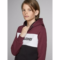 JACK & JONES Sweat Hoodie Logo Port Royale