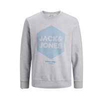 JACK & JONES Sweatshirt Larsen Grey