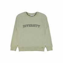 NAME IT Sweatshirt Billie Silver Sage
