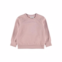 NAME IT Sweatshirt Tekka Woodrose