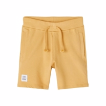 NAME IT Sweat Shorts James Fall Leaf